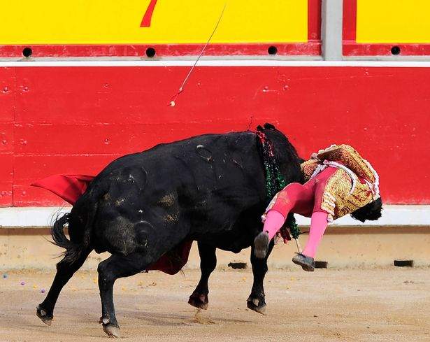 Víctor Barrio killed by bull10