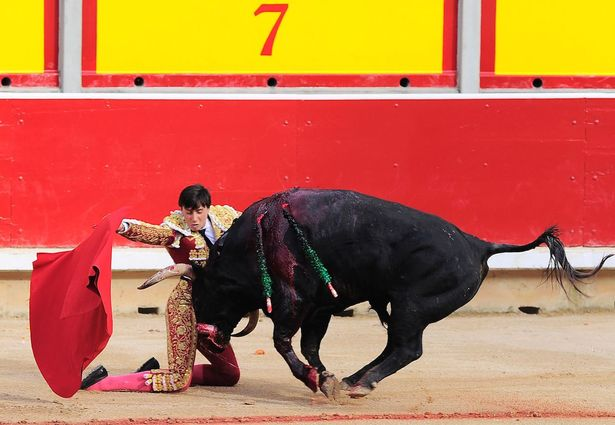 Víctor Barrio killed by bull11