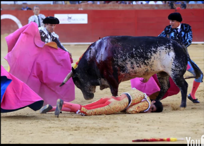 Víctor Barrio killed by bull6