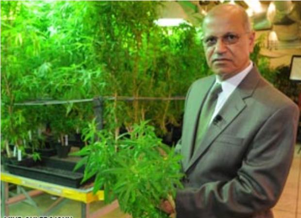 Mahmoud ElSohly1.png