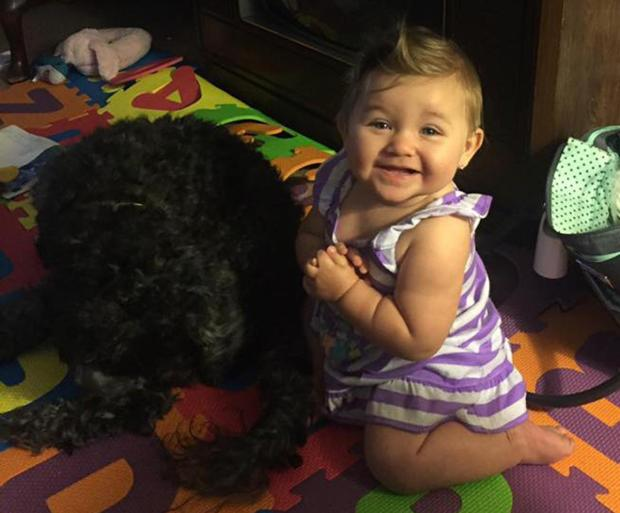 Polo the dog died protecting 8-month-old Vivana Poremski, who was severly burned in a house fire1