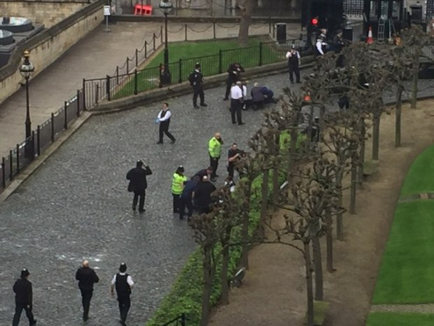 Emergency teams were seen carrying out CPR inside the palace grounds in New Palace Yard, the main thoroughfare in and out of Parliament .jpg