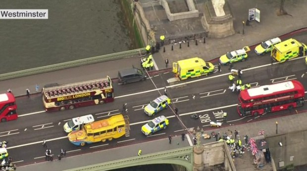 The attacker mowed down several pedestrians as he drove a grey Hyundai i40 across Westminster Bridge.jpg