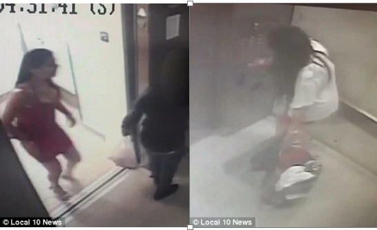 Thief-in-action Fouad caught on tape stealing.png