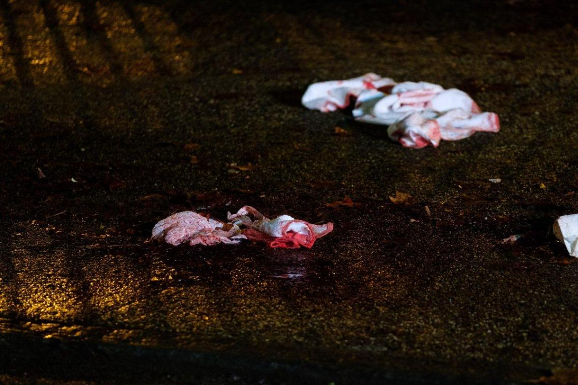 Bloody scene after Carroll was stabbed outside a park in Brooklyn on Friday..jpg